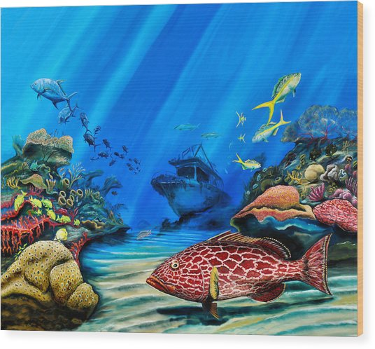 Yellowfin Grouper Wreck Wood Print
