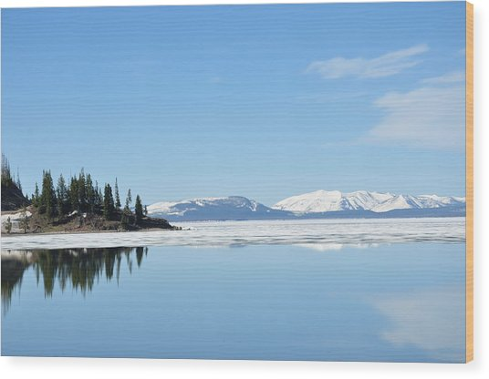 Yellowstone Lake In The Spring Wood Print