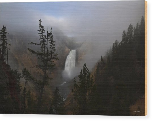 Yellowstone - Lower Falls At Sunrise Wood Print