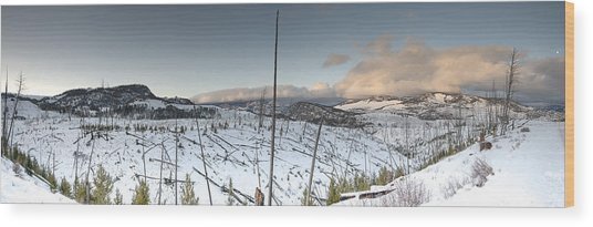 Yellowstone Morning Wood Print by David Yack