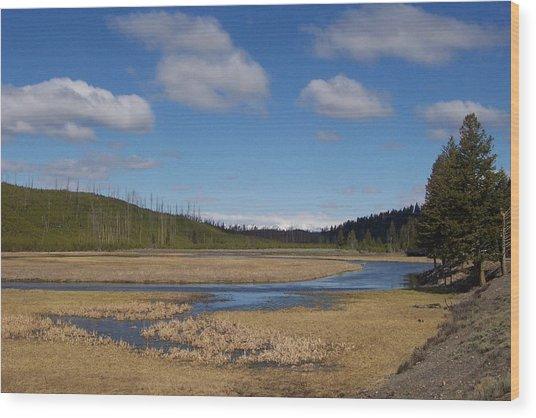 Yellowstone Park 2 Wood Print