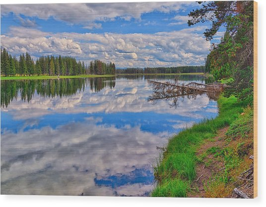 Yellowstone River Reflections Wood Print