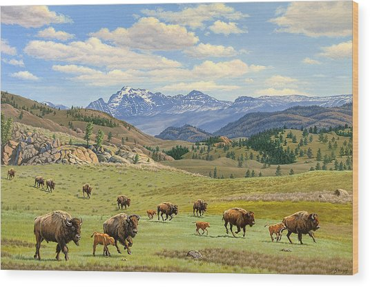 Yellowstone Spring Wood Print