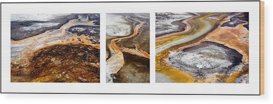 Yellowstone Triptych Wood Print