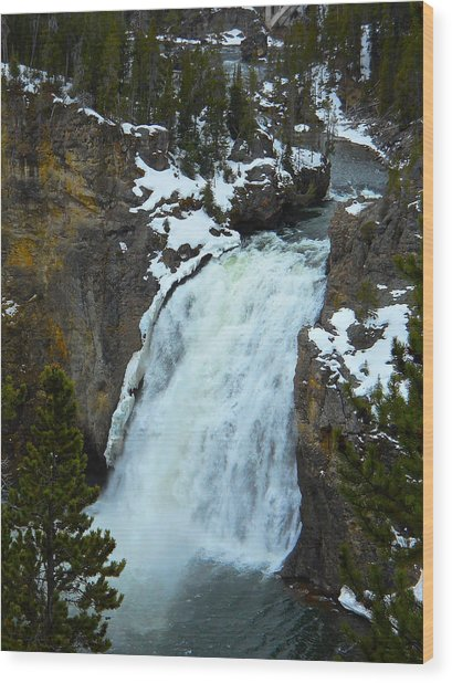 Yellowstone Upper Falls In Spring Wood Print