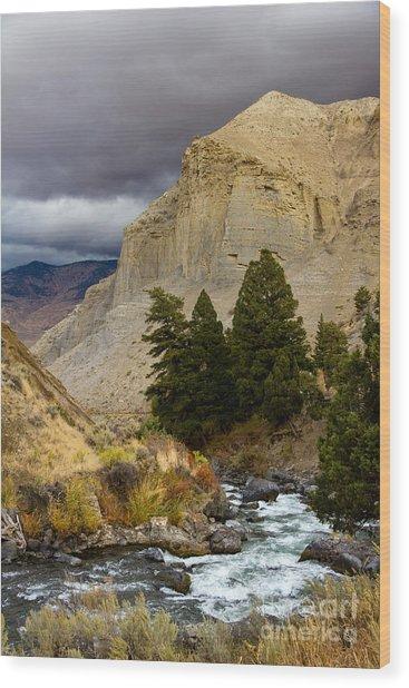 Yellowstone's Beauty Wood Print