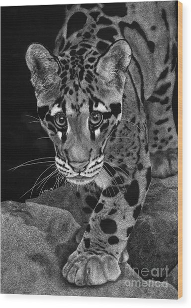 Yim - The Clouded Leopard Wood Print