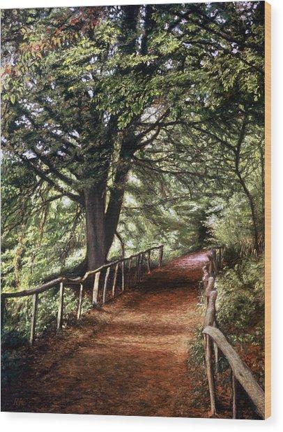 Yockletts Bank Wood Print
