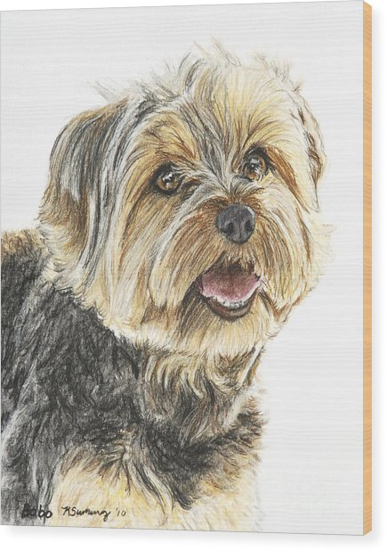 Yorkie In Color Wood Print
