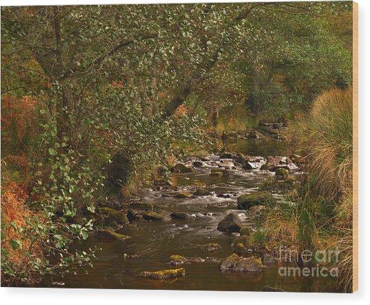 Yorkshire Moors Stream In Autumn Wood Print
