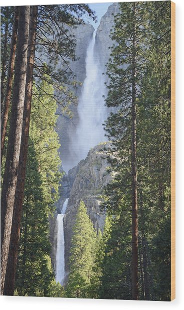 Yosemite Falls In Morning Splendor Wood Print