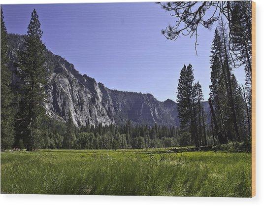 Yosemite Meadow Wood Print