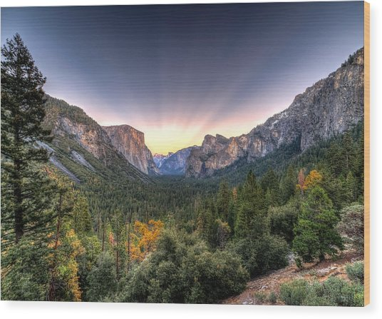 Yosemite View Wood Print