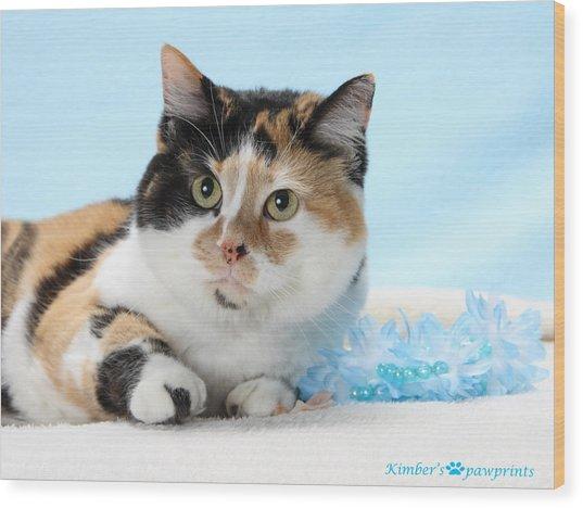 You Had Me At Meow..... Wood Print