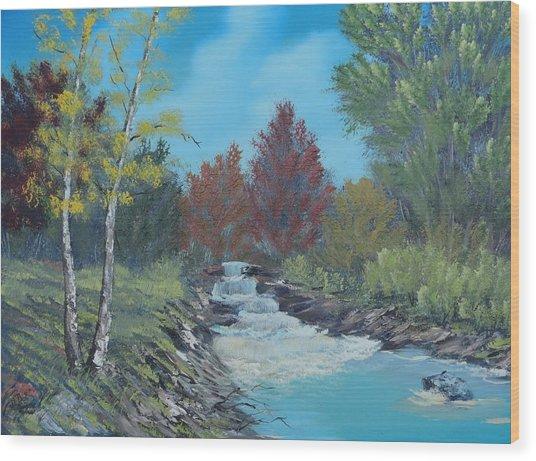 Young Cascades Wood Print