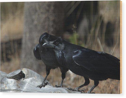You've Got Something On Your Beak Wood Print