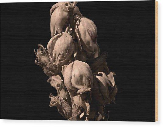 Yucca Wood Print