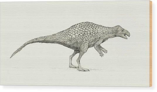 Zalmoxes Dinosaur Wood Print by Nemo Ramjet