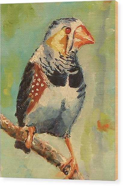 Zebra Finch Wood Print