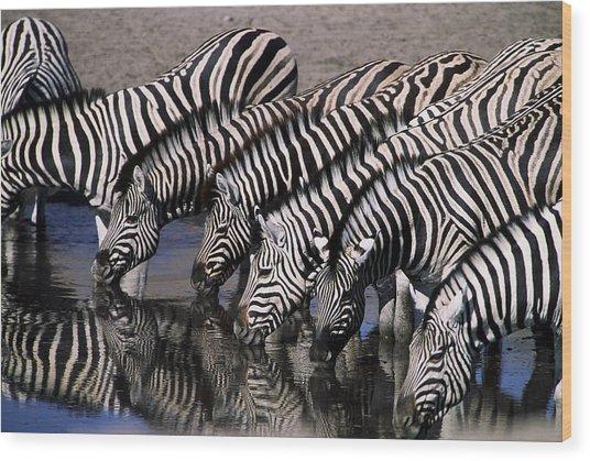 Zebra Line Wood Print by Stefan Carpenter