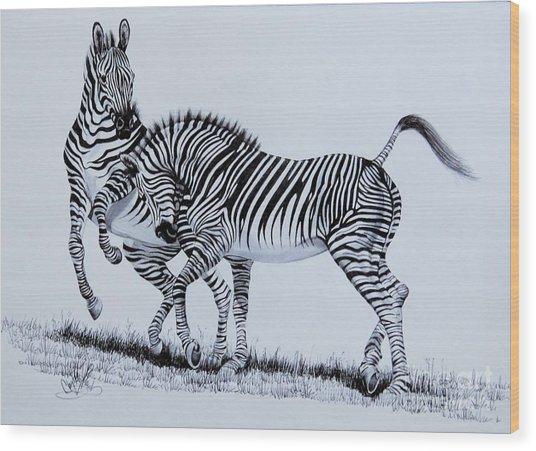 Zebra Play Wood Print