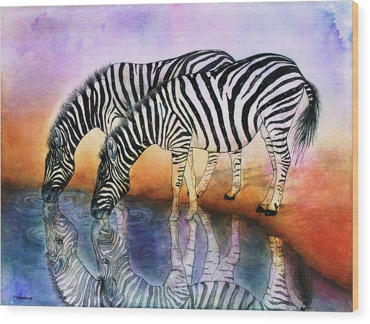 Zebra Reflections Wood Print