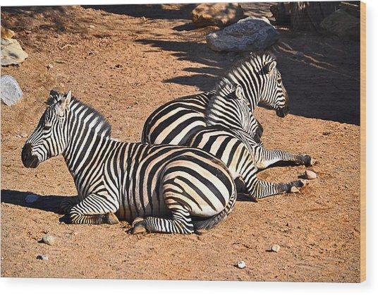 Zebra1 Wood Print