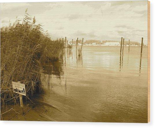 Zeeburg Beach Wood Print by Karen Weetman