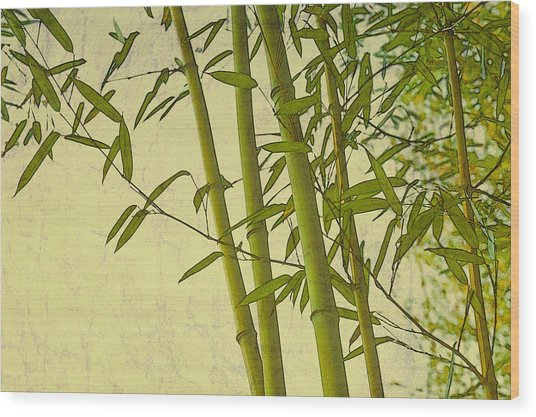 Zen Bamboo Abstract I Wood Print