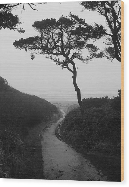 Zen Path Wood Print