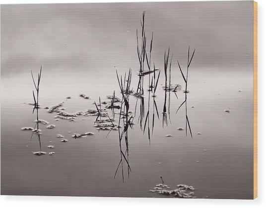 Zen Waters Wood Print