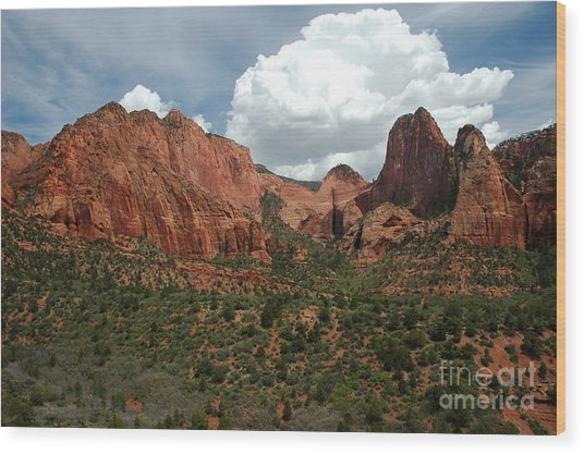 512p Zion Area Wood Print