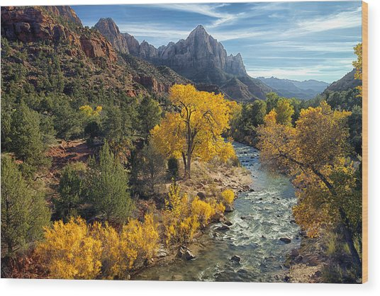 Wood Print featuring the photograph Zion National Park In Fall by Gigi Ebert