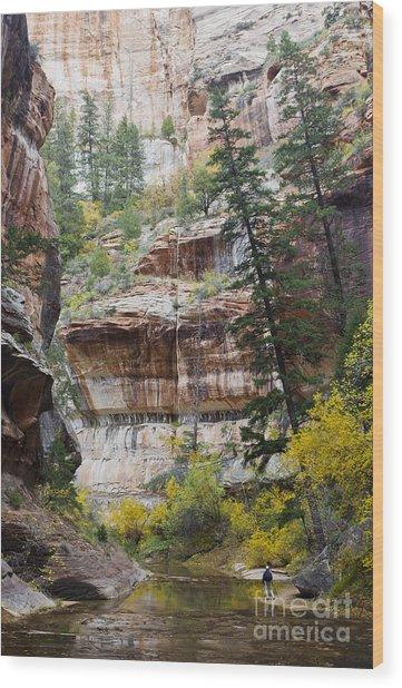 Zion Passage Wood Print by John Blumenkamp