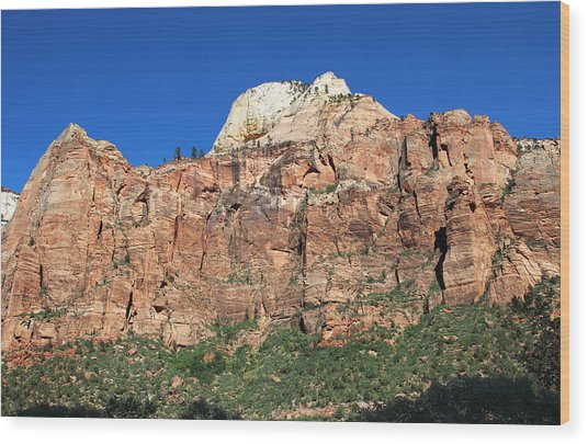 Zion Wall Wood Print