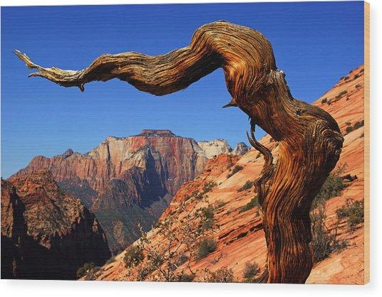 Zion's West Temple View Wood Print