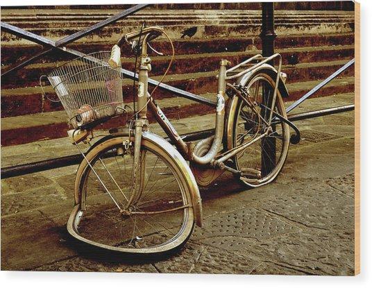 Bicycle Breakdown Wood Print