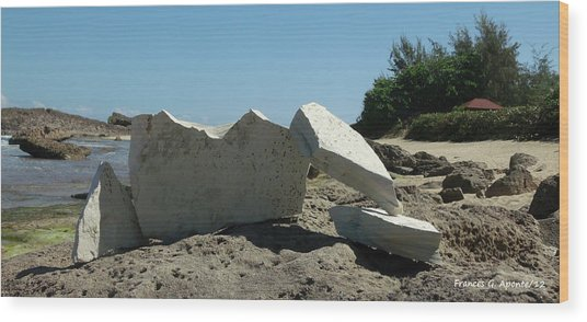Concrete On The Rock Wood Print by Frances G Aponte