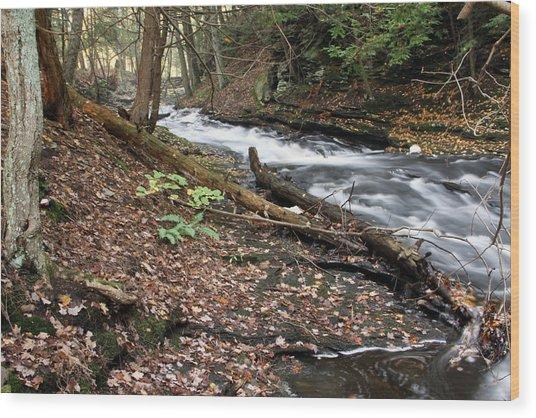 River Below Grayville Falls 2 Wood Print