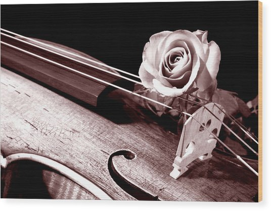 Rose Violin Viola Wood Print