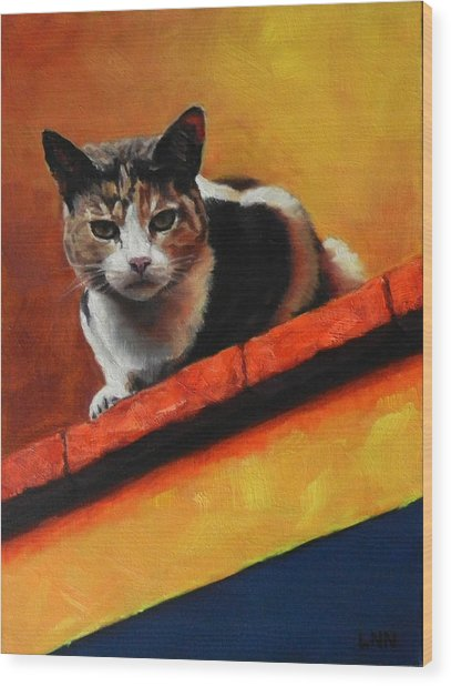 A Top Cat In The Shadow, Peru Impression Wood Print