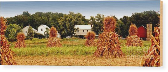 Amish Corn Harvest Wood Print by Russell Ford