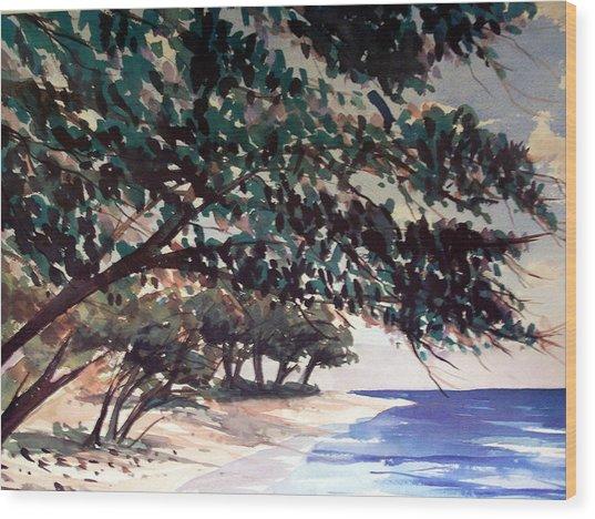 Anini Beach Wood Print by Jon Shepodd