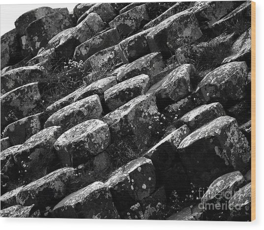 Another View Of The Giants Causeway Wood Print