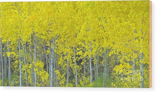 Aspen Power Wood Print