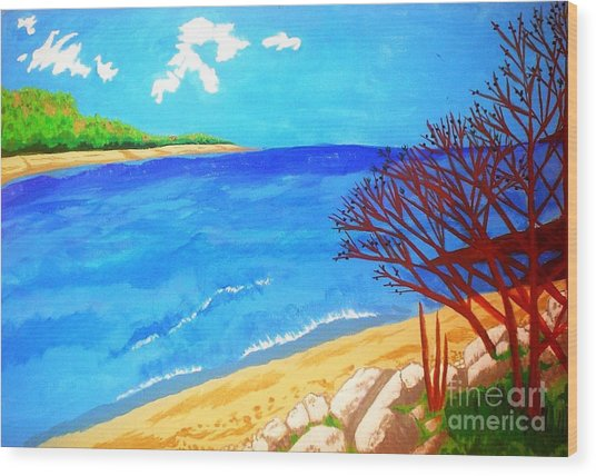 Beautiful Blue Lake Wood Print