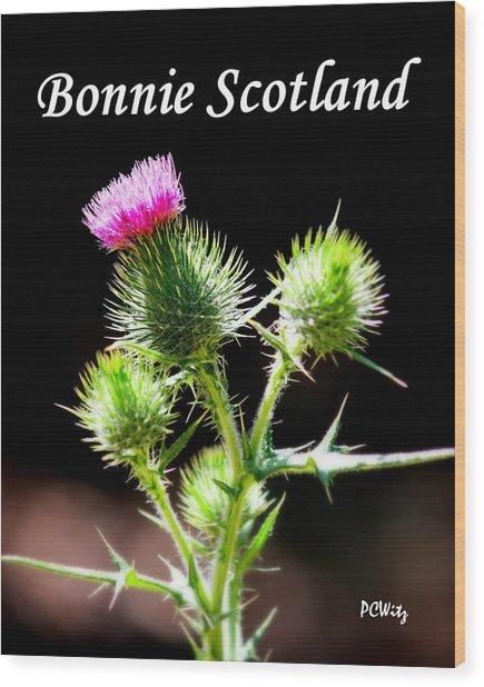Bonnie Scotland Wood Print