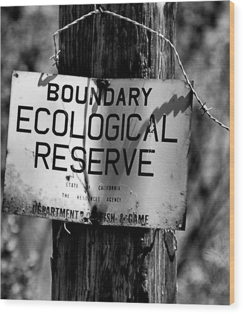 Boundary Wood Print