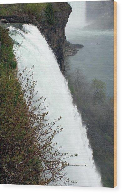 Bridal Veil Falls Wood Print by David Gilman