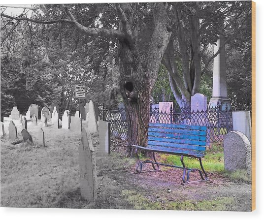Burial Hill  Wood Print by Janice Drew
